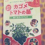 トマトの成長記録♪① ~ミニトマト栽培始めます~